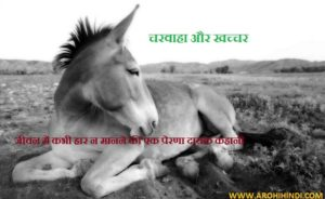 Inspiring Story of mule in Hindi